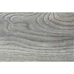 14600-1 Дуб пепельный
