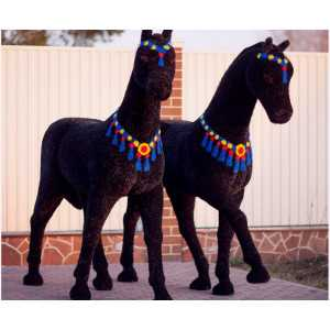 Топиари Лошадь