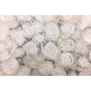 Линолеум бытовой усиленный Fleur Rose 1